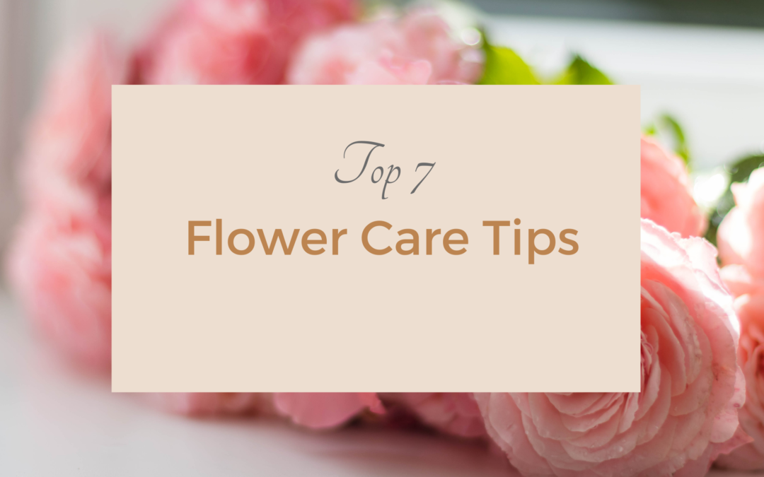 Top 7 Flower Care Tips